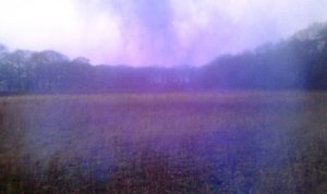 An intervention in a Dutch landscape. The mist of the blue cloud (Kersten threw blue chalk towards the horizon and took a photo) interferes and works with the bad quality JPG and its RGB pixels/dots. There's a merging of immaterial to material and the other way around.
